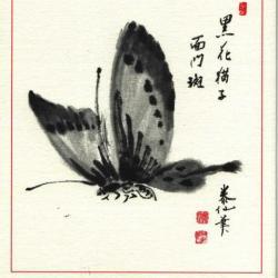 Papillon sumi-e