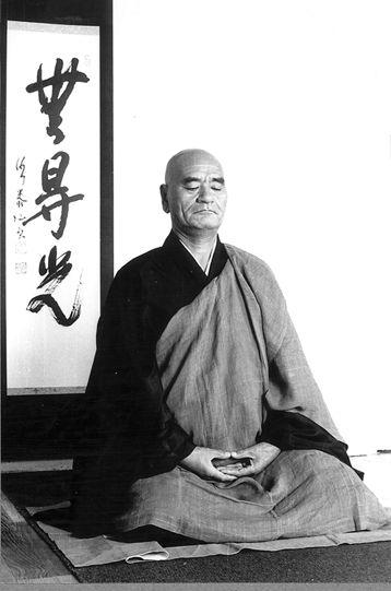 Deshimaru posture 1